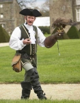 French Falconer and Harris Hawk - 1621
