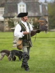 French Falconer and Harris Hawk - 1653