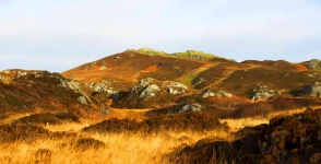colonsay-moorland-landscape-7499